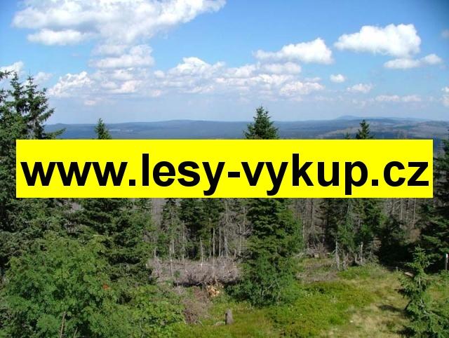Výkup lesů, západní polovina Slovenska